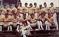 1978 Cincinnati Suds.jpg