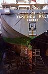1984 Lloyd Rio from Bamenda Palm conversion.jpg
