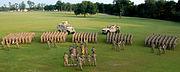 1st 113th Cavalry