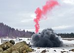 2-503rd Infantry Battalion (Airborne) conduct training at GTA 170206-A-UP200-075.jpg