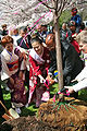 2008-Subaru-Cherry-Blossom-Festival-of-Greater-Philadelphia-4.jpg