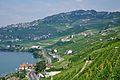 2012-08-12 10-42-36 Switzerland Canton de Vaud Chexbres.JPG