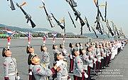 2013.10.1 건군 제65주년 국군의 날 행사 The celebration ceremony for the 65th Anniversary of ROK Armed Forces (10078325636)