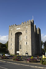 2015-0138 - Bunratty Castle Ireland.jpg