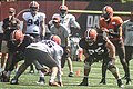 2016 Cleveland Browns Training Camp (28614566501).jpg