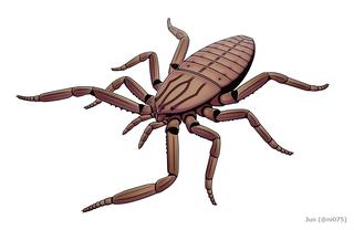 <i>Plesiosiro</i> Extinct genus of arachnids