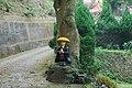 315, Taiwan, 新竹縣峨眉鄉湖光村 - panoramio.jpg