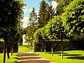 3459. Pushkin. Old garden.jpg