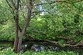 3 Остепненные склоны и балочные леса по правому берегу долины р. Осетрик.jpg