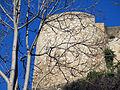 455 Torre de Túbal, al castell de la Suda (Tortosa), des de la Costa dels Capellans.JPG