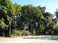818jfSanto Cristo Hermosa Hall Bataanfvf 24.JPG