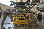 82nd Combat Aviation Brigade supporting CJTF-HOA 170203-F-QF982-0339.jpg