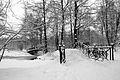 9061vik Park w Pszczynie . Foto Barbara Maliszewska.jpg