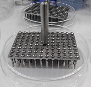 Agar plate - 96 pinner used to perform spot assays with yeast, fungal or bacterial cells