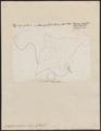 Aëtobatis narinari - 1700-1880 - Print - Iconographia Zoologica - Special Collections University of Amsterdam - UBA01 IZ14200123.tif