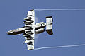 A-10 Thunderbolt II 3.jpg