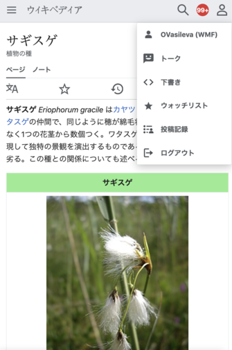 Screenshot of the Advanced mobile contributions user menu in Japanese Wikipedia