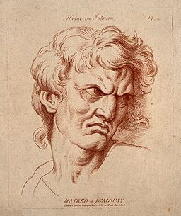 A face expressing hatred or jealousy. Etching in the crayon Wellcome V0009343