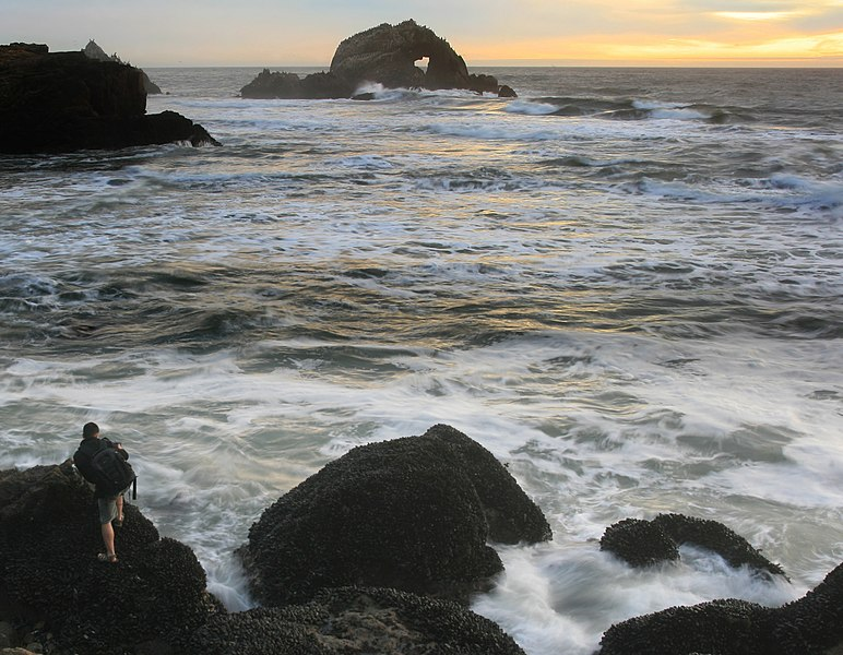 File:A photographer between waves and mussels 3.jpg