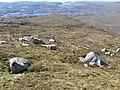 Above Craig na Claise Carnaich - geograph.org.uk - 424320.jpg