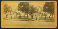 Adults and children posing against a background of a home with fences, from Robert N. Dennis collection of stereoscopic views.png