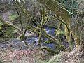 Afon Erch above Pont Maen-llwyd - geograph.org.uk - 1803670.jpg
