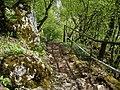 Aggtelek, 3759 Hungary - panoramio (9).jpg