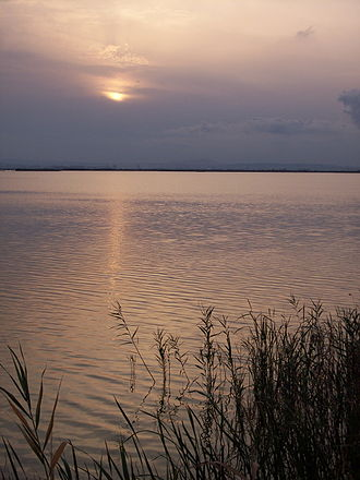 Albufera - Sunrise on the Albufera lagoon.