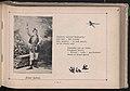 Albumik teatralny 1902 (36544161).jpg