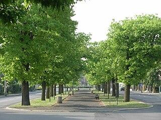 Ossoliński Alley in Bydgoszcz