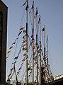 All flags flying - geograph.org.uk - 2706092.jpg
