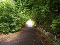 Alley - panoramio - Dmitrijs Purgalvis.jpg
