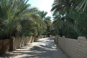 Jebel Hafeet - An alley at the Al Ain Oasis