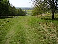 Along the footpath to Little Bytham - geograph.org.uk - 401708.jpg