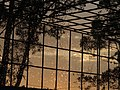 Amanecer con rocío entre las rendijas 06.jpg