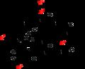 Amatoxins generic strucuture.png