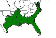 American green tree frog range map.JPG