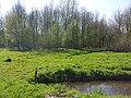 Amstelveen, Netherlands - panoramio (74).jpg