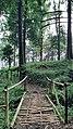 An Old Bamboo Bridge at Mount Bunder.jpg