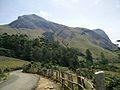 Anaimudi peak.jpg
