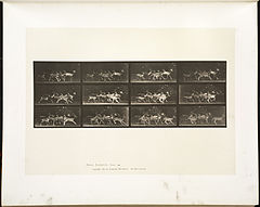 Animal locomotion. Plate 690 (Boston Public Library).jpg