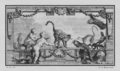 Animaux d'outre-Mer II (Ocelot et Phoque) - Overseas Animals 2 (Ocelot and Seal) - Gallica - ark 12148-btv1b2300260j-f2.png