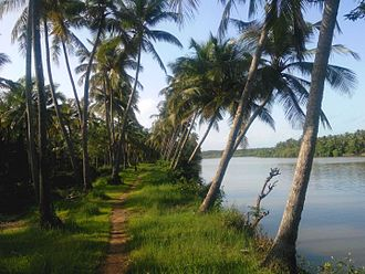 Anjarakandi River - Image: Anjarakkandi River