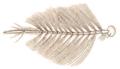 Anopheles claviger antenna-male John Curtis British Entomology 210.png