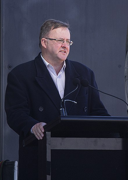 Anthony Albanese, Labor leader 2019- Anthony Albanese 2013 (cropped).jpg