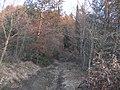 Antica strada per il Castello - panoramio.jpg