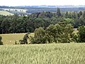 Arable land and woods near Linnel Hill - geograph.org.uk - 498795.jpg