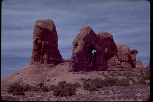 Arches National Park ARCH4493.jpg