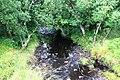 Ardilistry River - geograph.org.uk - 1476215.jpg