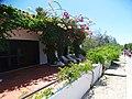 Armona Island (Portugal) (49224731241).jpg